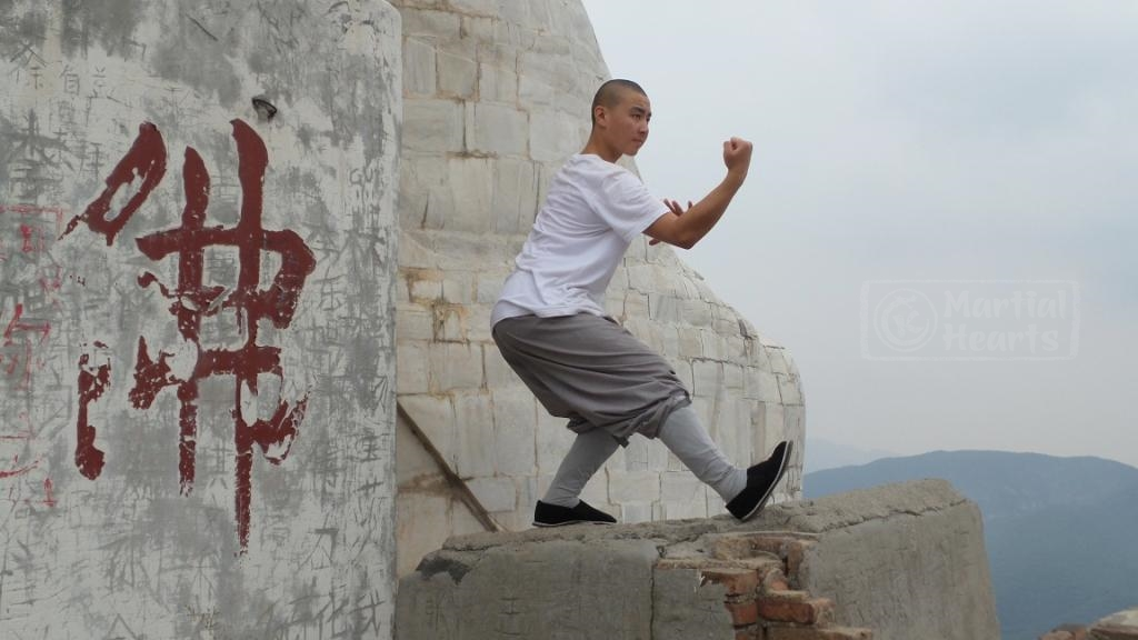 Курсы кунг фу в Китае